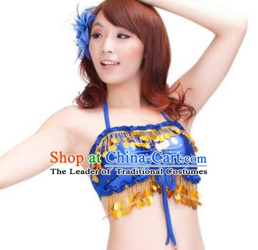 Indian Belly Dance Royalblue Garter Brassiere Asian India Oriental Dance Costume for Women