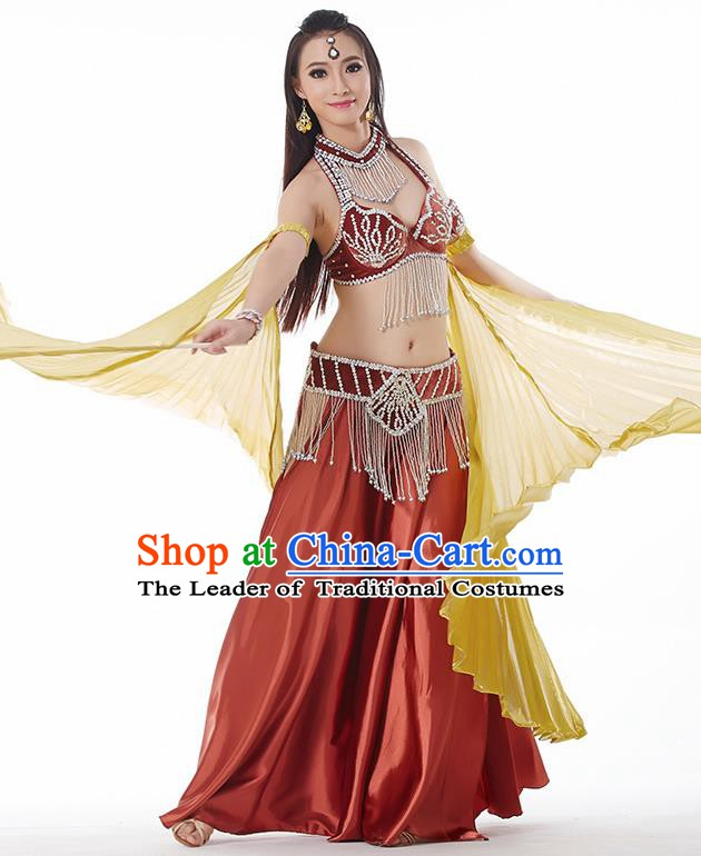Traditional India Oriental Bollywood Dance Velvet Costume Indian Belly Dance Brownish Red Dress for Women