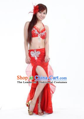 Traditional Indian Stage Oriental Dance Red Dress Belly Dance Costume for Women