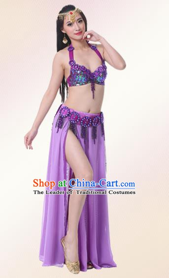 Indian Oriental Belly Dance Performance Purple Dress Traditional Raks Sharki Dance Costume for Women