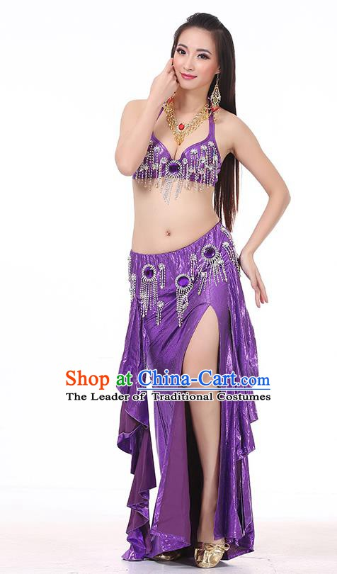 Top Indian Belly Dance Purple Dress India Traditional Raks Sharki Oriental Dance Performance Costume for Women