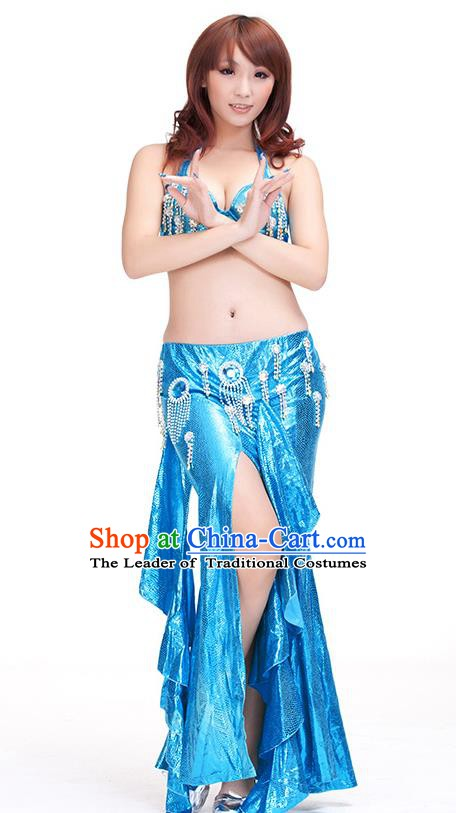 Top Indian Belly Dance Blue Dress India Traditional Raks Sharki Oriental Dance Performance Costume for Women