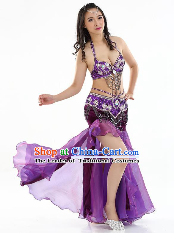 Top Indian Belly Dance India Traditional Raks Sharki Purple Dress Oriental Dance Costume for Women