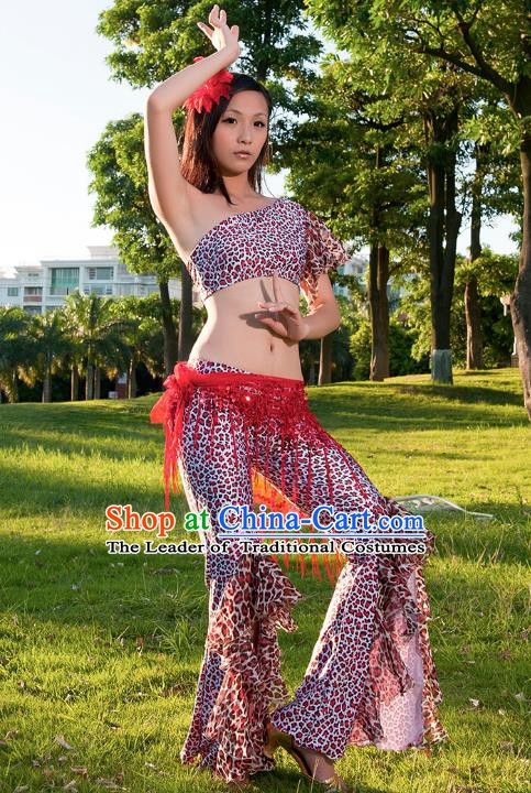Asian Indian Belly Dance Leopard Dress Stage Performance Oriental Dance Clothing for Women