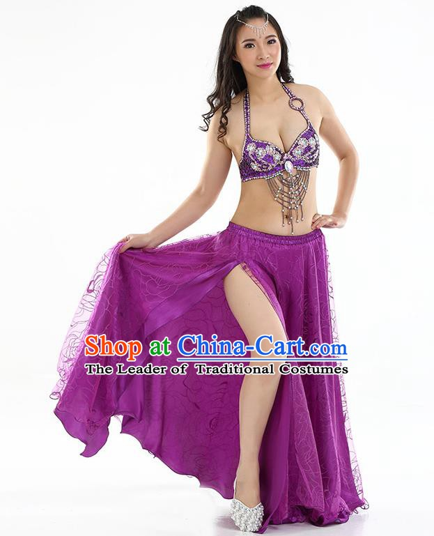 Top Grade Bollywood Belly Dance Purple Dress Indian Raks Sharki Oriental Dance Clothing for Women