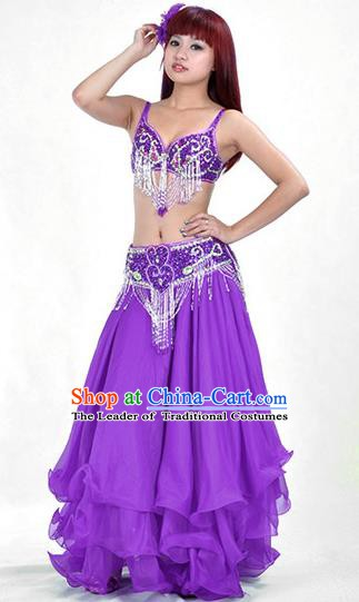 Traditional Bollywood Belly Dance Purple Dress Indian Oriental Dance Costume for Women