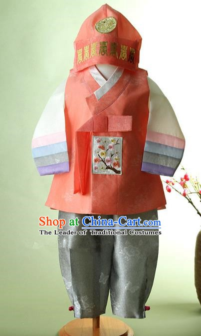 Korean Traditional Hanbok Clothing Korean Boys Hanbok Costumes for Kids