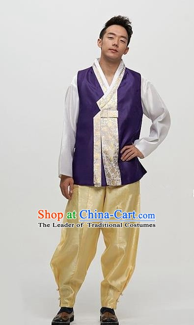 Asian Korean Traditional Male Purple Hanbok Ancient Palace Bridegroom Costumes for Men