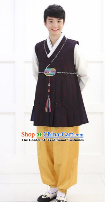 Traditional Korean Costumes Ancient Korean Bridegroom Hanbok Purple Vest and Yellow Pants for Men