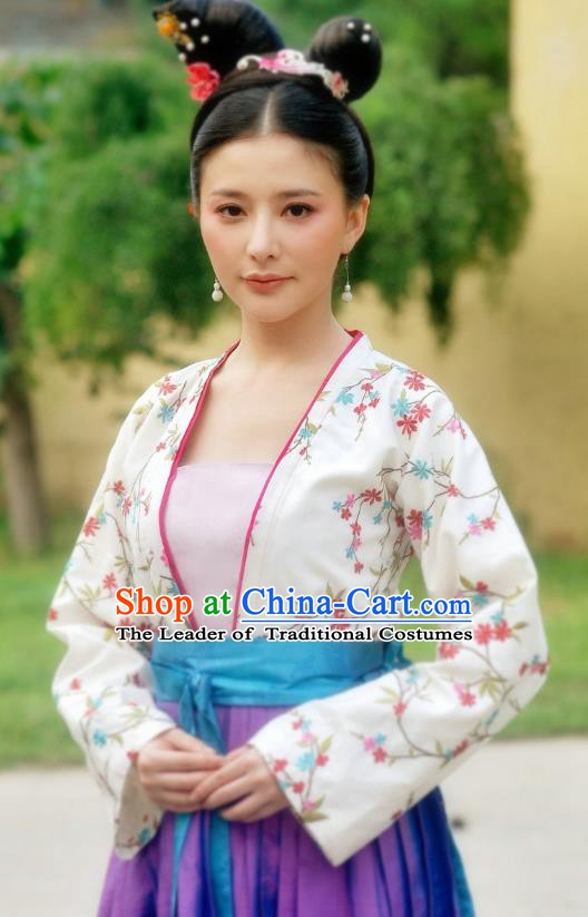 Chinese Traditional Tang Dynasty Court Maid Embroidered Dress Replica Costume for Women