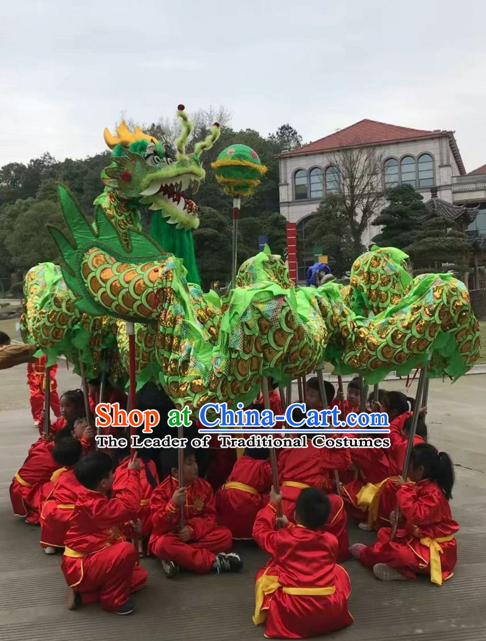 Asian Chinese Classical Parade Procession Dragon Dance Costumes Complete Set for 8 Adults or Kids