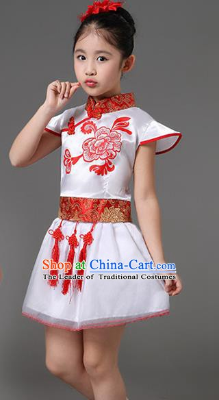 Traditional Chinese Classical Dance Costume, Children Folk Dance Chorus Dress for Kids