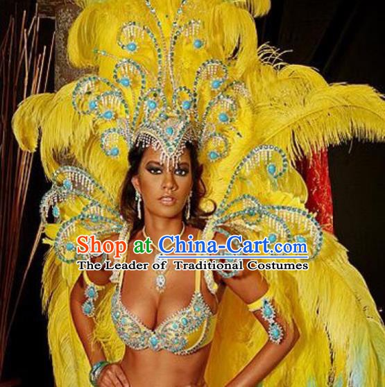 Top Grade Brazilian Carnival Costumes Halloween Feather Accessories Feather Headdresses Miami Stage Performance Feathers Wings for Women