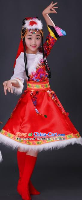 Traditional Chinese Zang Nationality Dance Costume, Chinese Folk Dance Ethnic Clothing Tibetan Minority Red Dress for Women