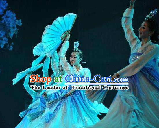 Traditional Chinese Korean Nationality Folk Dance Embroidered Costume, China Ethnic Minority Dance Clothing for Women