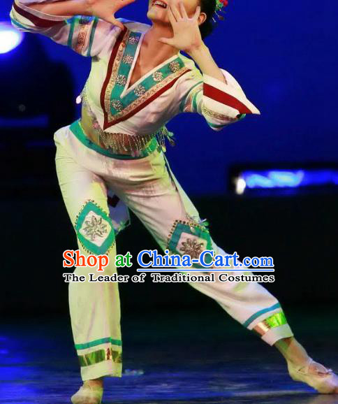 Chinese Traditional Folk Dance Classical Dance Costume, China Stage Performance Clothing for Women