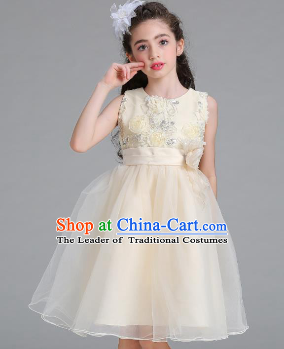 Children Models Show Compere Costume Stage Performance Catwalks Champagne Veil Full Dress for Kids
