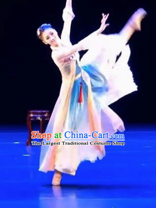 Chinese Traditional Folk Dance Costume Classical Dance Dress for Women