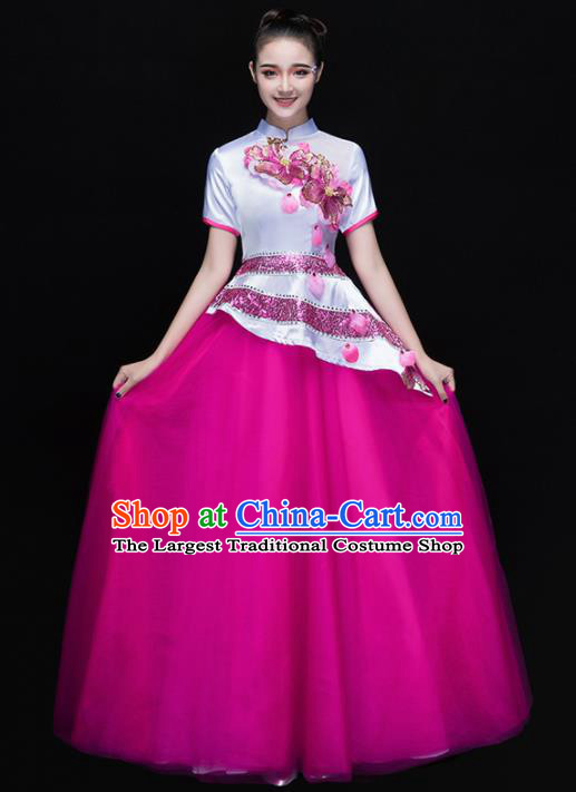 Professional Chorus Costumes Chinese Classical Dance Folk Dance Compere Rosy Dress for Women