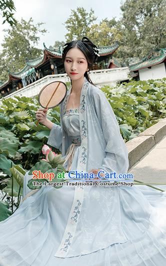 Chinese Traditional Song Dynasty Young Lady Costume Ancient Embroidered Hanfu Dress for Women