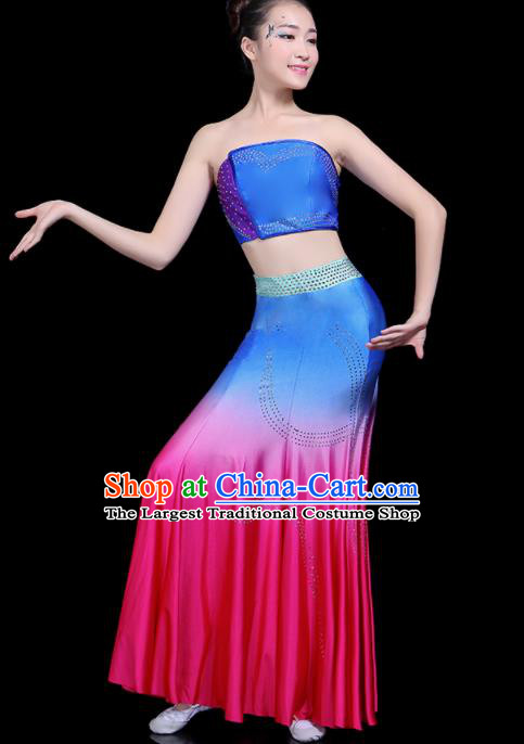 Chinese Traditional Peacock Dance Dress Dai Minority Folk Dance National Costume for Women