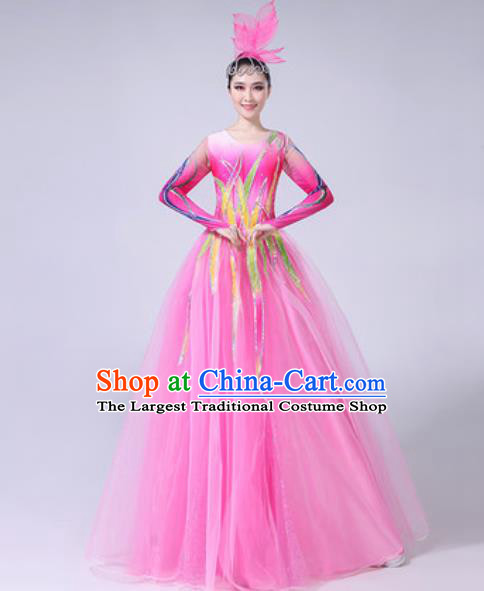 Professional Modern Dance Costumes Stage Show Chorus Group Dance Pink Veil Dress for Women