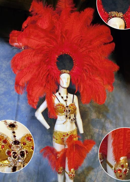 Halloween Catwalks Stage Show Samba Costumes Brazilian Carnival Parade Clothing and Red Feather Headwear for Women