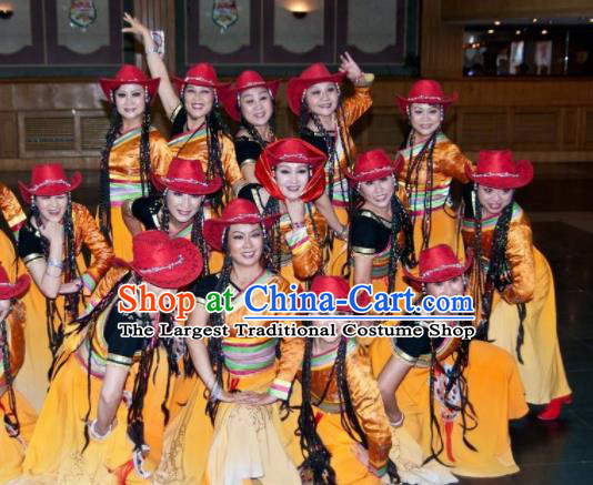 Chinese Traditional Classical Dance Costumes Tibetan Dance Stage Performance Dress for Women