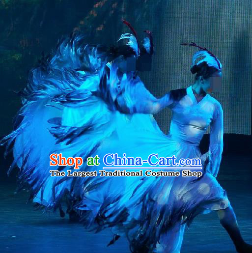 Chinese Traditional Classical Dance Costumes Group Dance Stage Performance Dress for Women