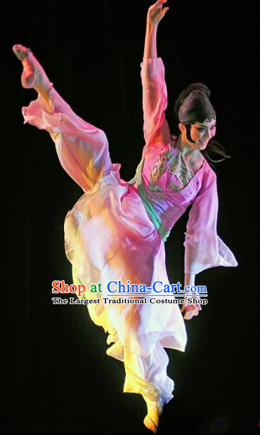 Chinese Traditional Classical Dance Group Dance Pink Costumes Stage Performance Dress for Women