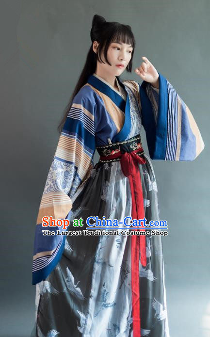 Chinese Traditional Jin Dynasty Historical Costumes Ancient Aristocratic Lady Hanfu Dress for Women