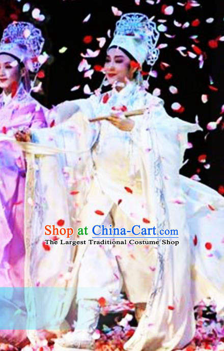 Traditional Chinese Classical Dance Costumes Beijing Opera Butterfly Lovers Dance Stage Show Clothing for Men