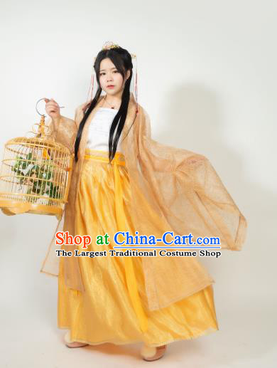 Ancient Chinese Song Dynasty Princess Hanfu Dress Nobility Lady Embroidered Historical Costumes for Women