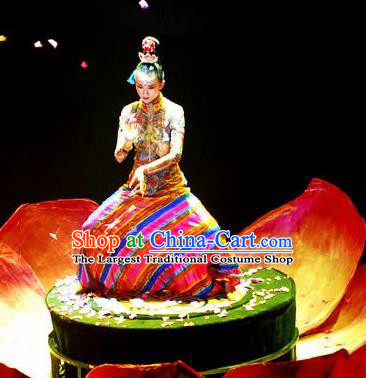 Chinese Impression Tibetan Zang Nationality Folk Dance Dress Yang Liping Stage Performance Costume and Headpiece for Women