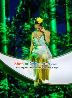 Chinese Jin Show Dan Zhai Miao Nationality Dance Dress Stage Performance Costume and Headpiece for Women