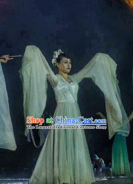 Chinese Dream Of Tao Classical Dance Blue Dress Stage Performance Costume and Headpiece for Women
