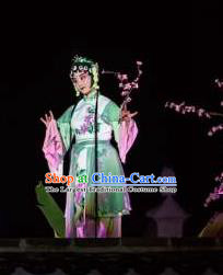 Chinese The Dream Of The Peony Pavilion Opera Maidservant Dance Green Dress Stage Performance Costume and Headpiece for Women