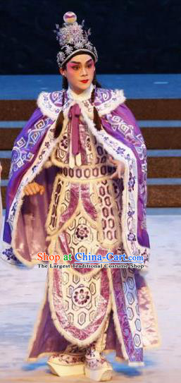 Bai Tu Ji Traditional Chinese Shaoxing Opera Takefu Stage Performance Purple Costumes and Headwear for Men