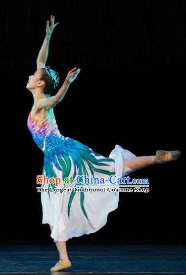 Chinese Female Embroider Classical Dance Dress Stage Performance Costume and Headpiece for Women