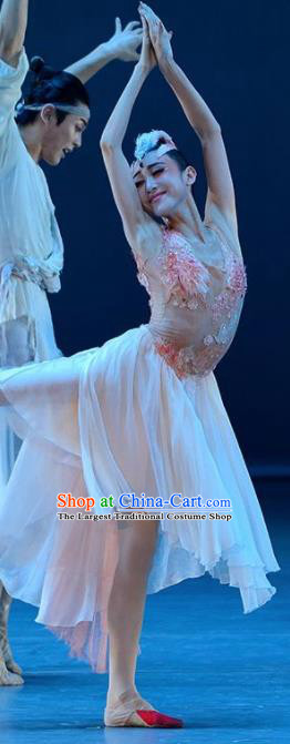 Crested Ibises Chinese Classical Dance White Dress Stage Performance Dance Costume and Headpiece for Women