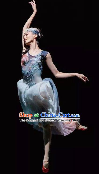 Crested Ibises Chinese Classical Dance Atrovirens Dress Stage Performance Dance Costume and Headpiece for Women