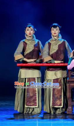 Trilogy of the Rapids Chinese Peking Opera Dress Stage Performance Dance Costume and Headpiece for Women