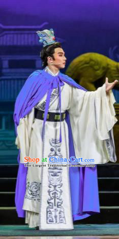 Chinese Bronze Swallow Terrace Prince Clothing Stage Performance Dance Costume for Men