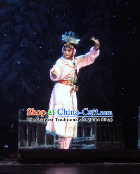 Su Wu In Desert Chinese Peking Opera Pink Dress Stage Performance Dance Costume and Headpiece for Women