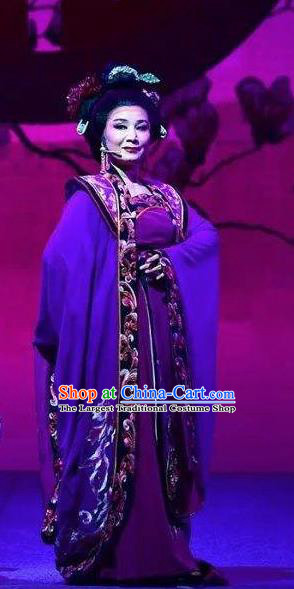 Amber Fate Chinese Beijing Opera Queen Purple Dress Stage Performance Dance Costume and Headpiece for Women