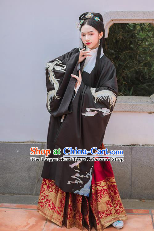 Chinese Ancient Ming Dynasty Embroidered Historical Costume Traditional Hanfu Dress for Women