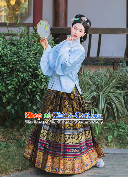 Chinese Ancient Ming Dynasty Princess Embroidered Historical Costume Blue Blouse and Black Horse Face Skirt Complete Set