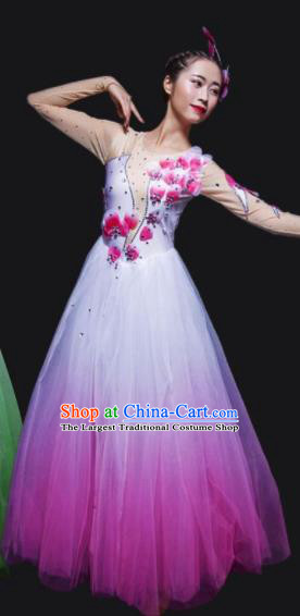 Chinese Traditional National Dance Costume Modern Dance Stage Performance Rosy Veil Dress for Women
