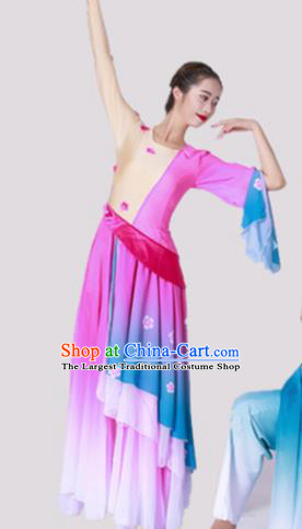 Chinese Traditional Classical Dance Costume Umbrella Dance Rosy Dress for Women