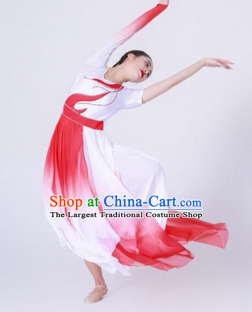 Chinese Traditional National Dance Clothing Classical Dance Red Costume for Women